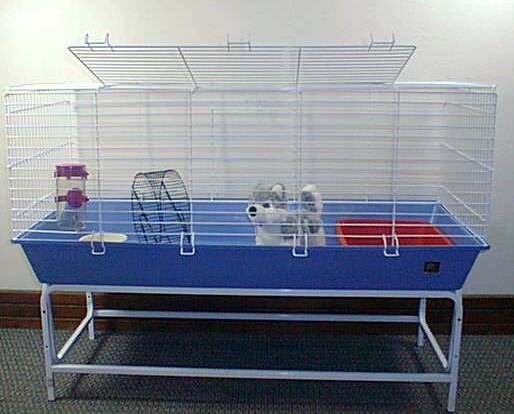 Guinea pig cages for sale picture and images for Small guinea pig cages for sale